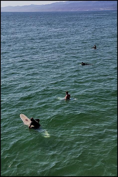 surfistas Venice